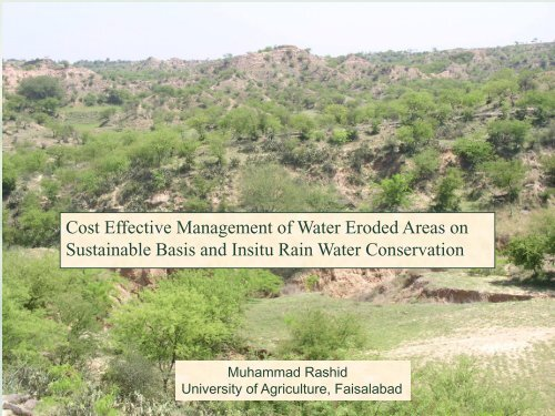 Cost Effective Management of Water Eroded Areas on Sustainable ...