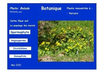 Télécharger la fiche complète - Jean-Louis Negre - Free