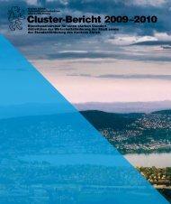 Cluster-Bericht 2009 –2010 - Amt für Wirtschaft und Arbeit - Kanton ...
