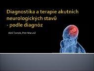 Diagnostika a terapie základních neurologických stavů (akutní stavy)