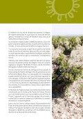 Turismo-Enológico-en-la-Provincia-de-Segovia - Page 7