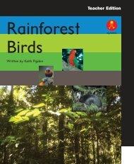 TE Rainforest Birds pages