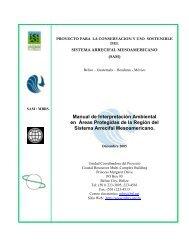Manual de Interpretación Ambiental en Áreas Protegidas de la ...