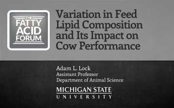 Variation in Feed Lipid Composition and Its Impact ... - Virtus Nutrition