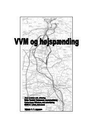 VVM og højspænding - Centre for Environmental Studies - Aarhus ...