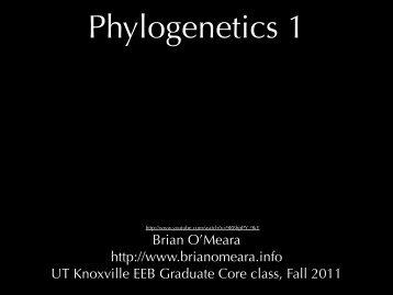 N - Brian O'Meara Lab