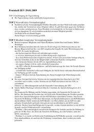 Protokoll vom 29 Januar 2009