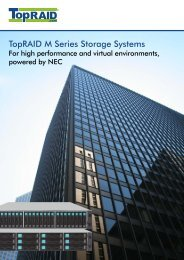 TopRAID M100, powered by  NEC, Datasheet (PDF)