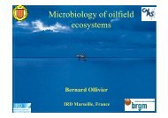 Microbiology of oilfield gy ecosystems