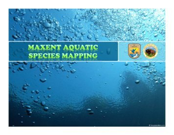 Maxent Aquatic Species Mapping - NOAA in the Carolinas
