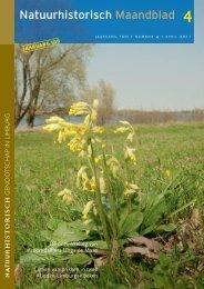 Larven van prikken in twee Midden-Limburgse beken (april)