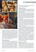 Pilze mit Heilkraft - GFVS - Seite 2