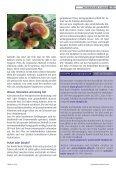 Pilze mit Heilkraft - GFVS - Seite 4