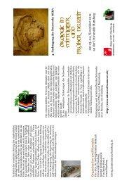 am 23.-24. November 2012 an der Universität Hamburg