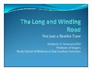 Long and Winding Road - Schenarts