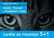 5+1 Alysia, ViraMax, Duralactin, Lisina - Vetnova