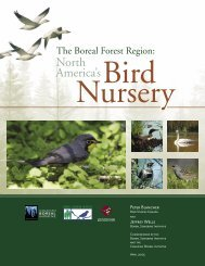 The Boreal Forest Region: North America's Bird Nursery