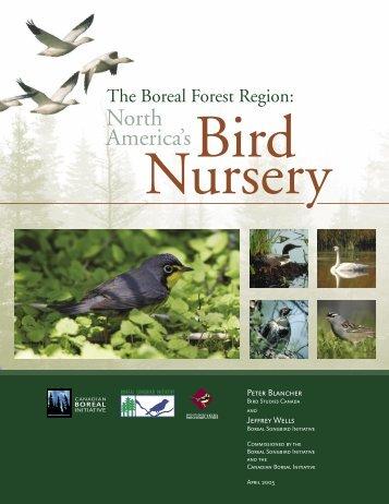 The Boreal Forest Region: North America's Bird Nursery