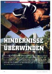 Download Artikel (PDF 2009 KB)