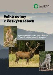 Velké šelmy v českých lesích - Hnutí DUHA