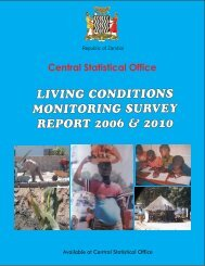 2006-2010 LCMS Report Final Output.pdf - Central Statistical Office ...