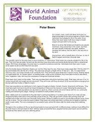 Polar Bears - World Animal Foundation