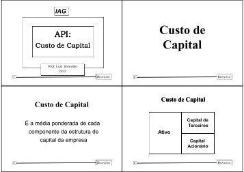 Custo de Capital - IAG - A Escola de Negócios da PUC-Rio