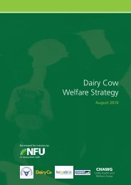 Dairy cow welfare report 2010 - Eblex