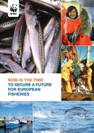 now is the time to secure a future for european fisheries - WWF