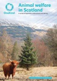 Download Animal Welfare in Scotland - OneKind