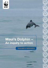 Maui's Dolphin: An Inquiry to Action Teachers ... - MarineNZ.org.nz