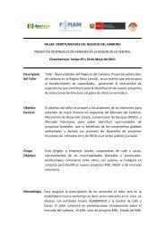 TALLER: OPORTUNIDADES DEL NEGOCIO DEL ... - Fonam