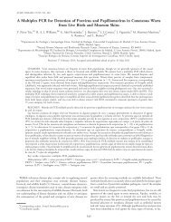 A Multiplex PCR for Detection of Poxvirus and ... - BioOne