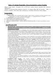 Zápis ze 15. jednání Finančního výboru - Chrudim