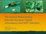The Spatial Relationship between Soybean Aphid Abundance and ...