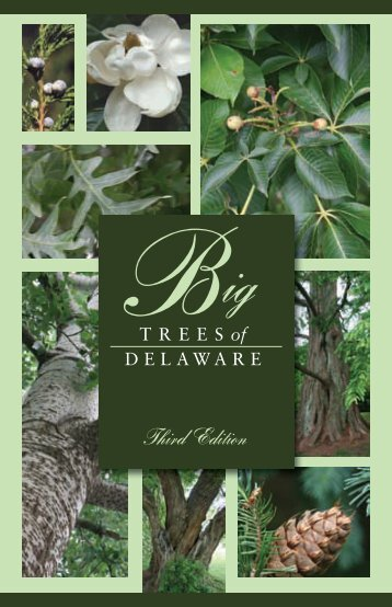 Big Trees of Delaware - Delaware Department of Agriculture - State ...