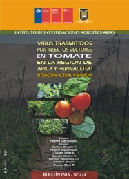 Virus trasmitidos por insectos vectores en tomate en ... - Inapi Proyecta