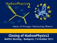 HadronPhysics 2 & 3 - NuPECC