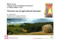 Thermal use of agricultural biomass (PDF) - bioenergybaltic