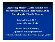Erin McMichael, Ocean energy technology and marine turtles within ...