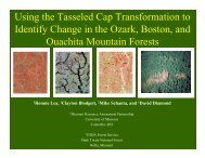 Using the Tasseled Cap Transformation to Identify Change - USGS ...