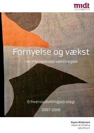 Erhvervsudviklingsstrategi 2007-2009 - Region Midtjylland