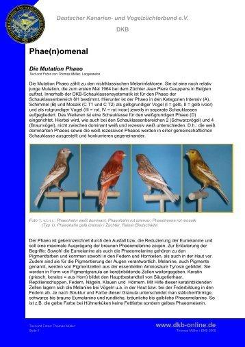 Phae(n)omenal - Deutscher Kanarien- und Vogelzüchter-Bund e.V.