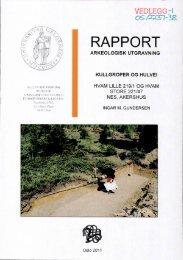 RAPPORT - Kulturnett Akershus