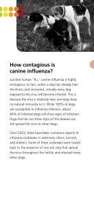 Canine Influenza   Dog Flu - Page 3