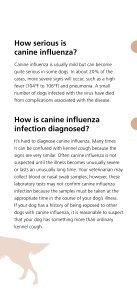 Canine Influenza   Dog Flu - Page 5
