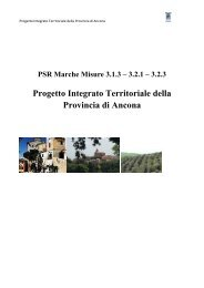 Progetto Integrato Territoriale della Provincia di Ancona(580 KB)