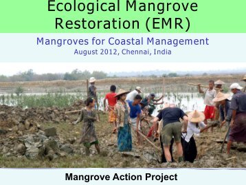 Community Forest Management - Mangroves for the Future