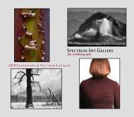 Spectrum Art Gallery - Spectrum Gallery