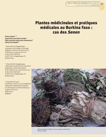 Plantes médicinales et pratiques médicales au Burkina Faso : cas ...
